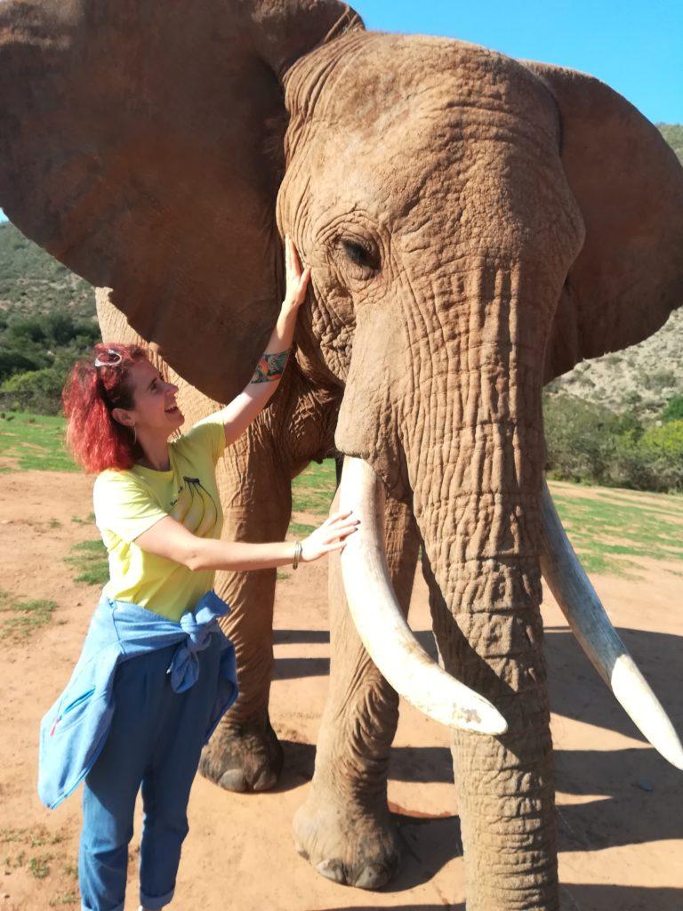 Eine Frau steht neben einem Elefanten und berührt sein Gesicht